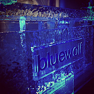 Bluewolf OSW 2013
