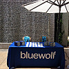 Bluewolf Elevate 2015