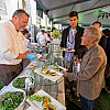 Fortune Brainstorm Green 2014_14234877255_l