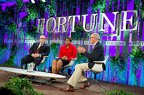 Fortune Brainstorm Green 2014_14044596327_l