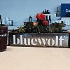 Bluewolf Client Engagement Summit